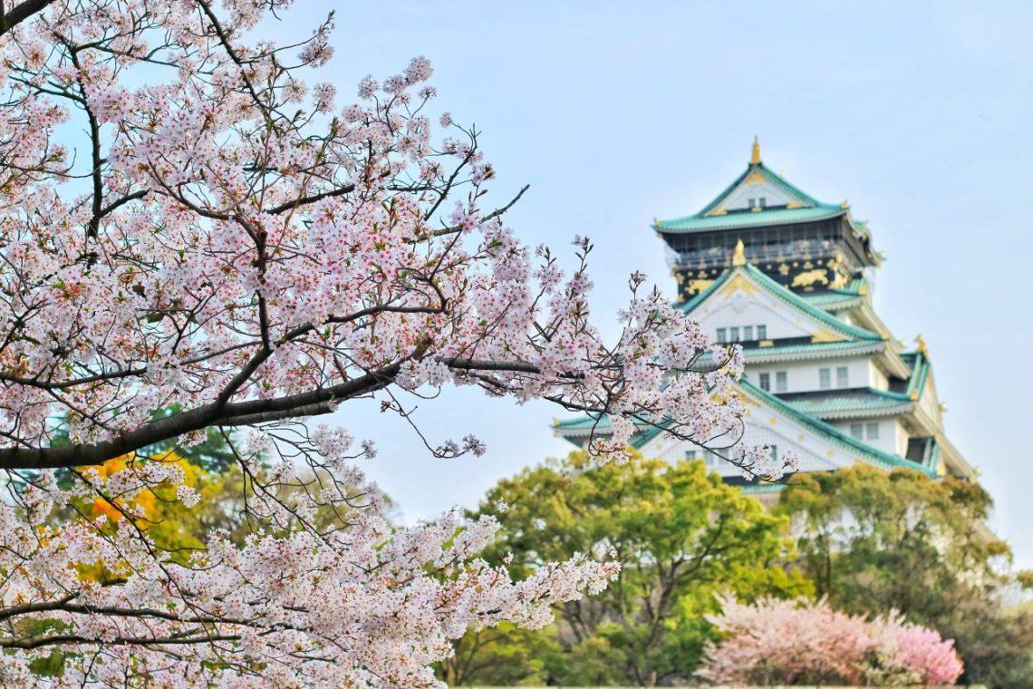 La Médecine traditionnelle chinoise et l'influence des saisons : le printemps
