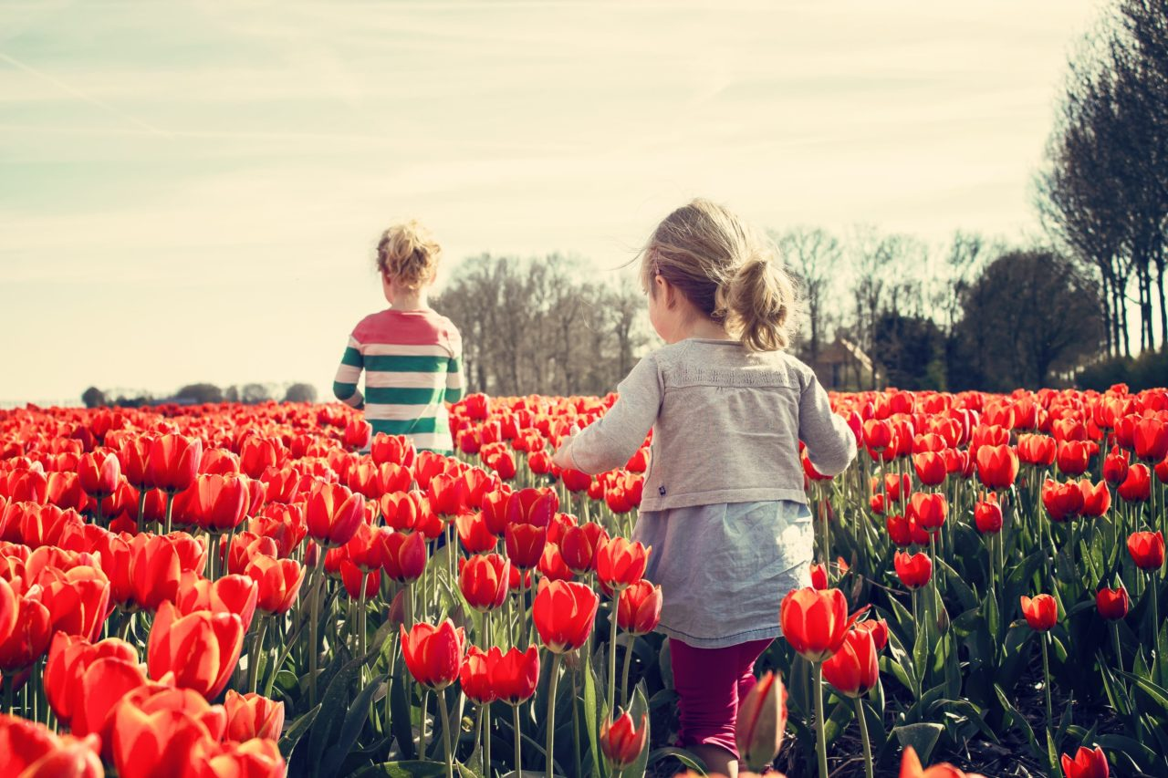 Comment apprendre à se recentrer et accueillir le printemps avec nos cinq sens ?