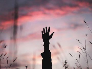 L'auto-sabotage ou comment s'interdire de vivre