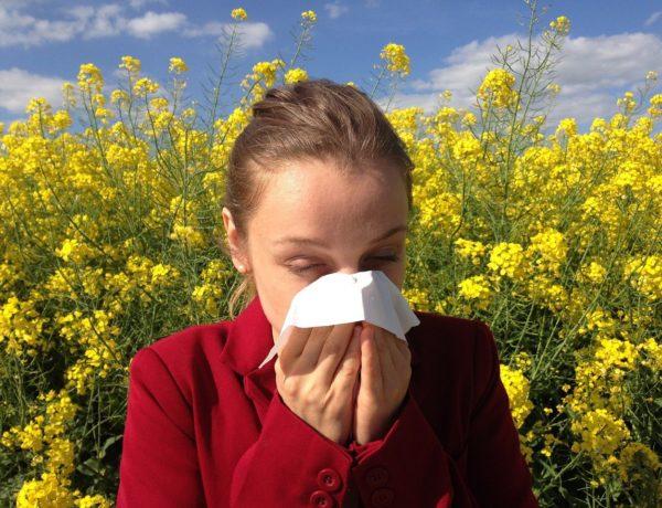 En finir avec les allergies de saison