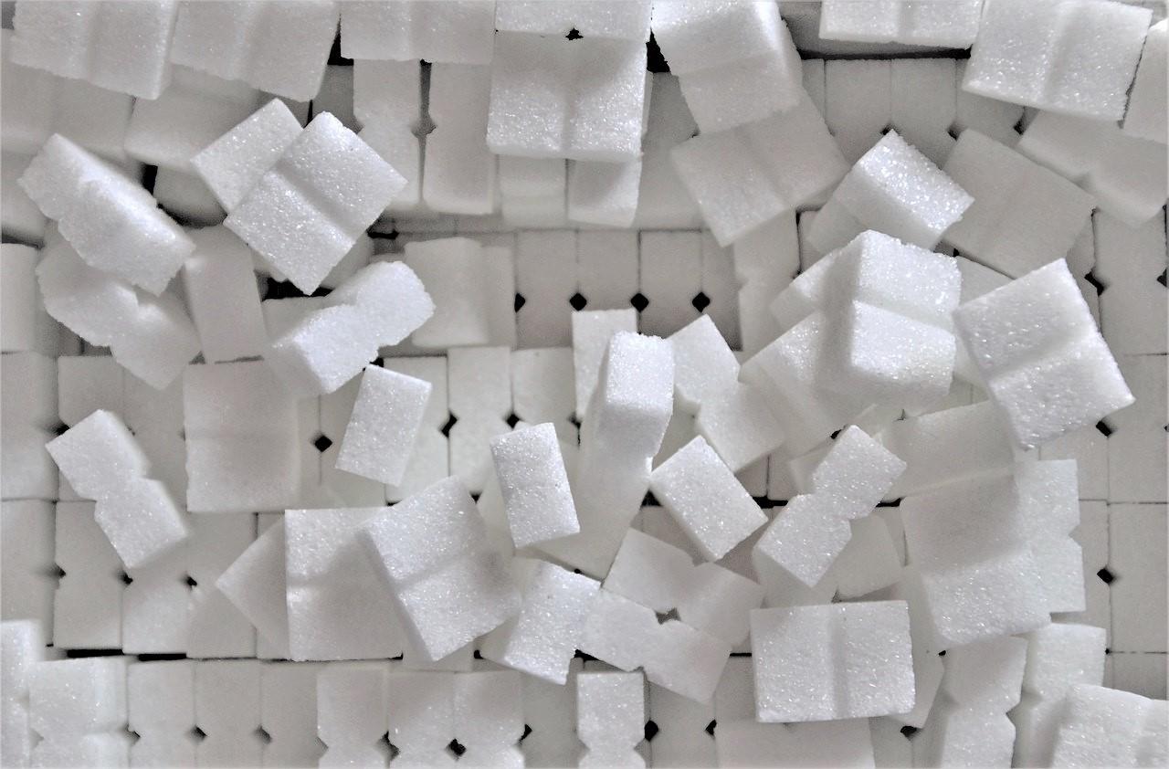 le sucre de canne