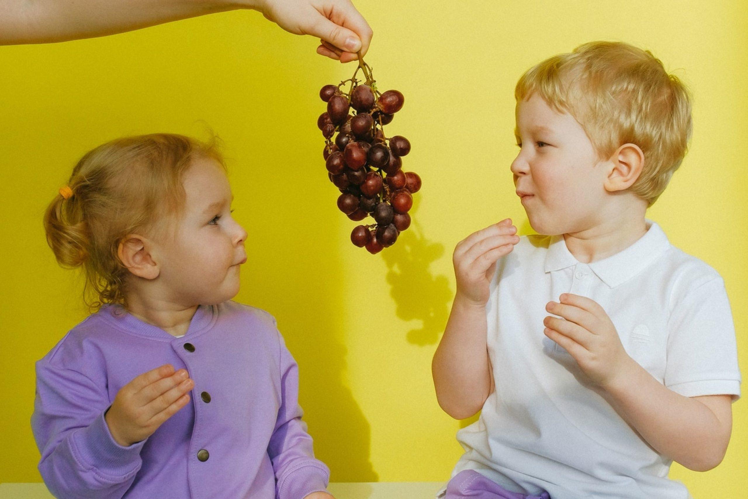 Les goûters sains dont les enfants se régalent