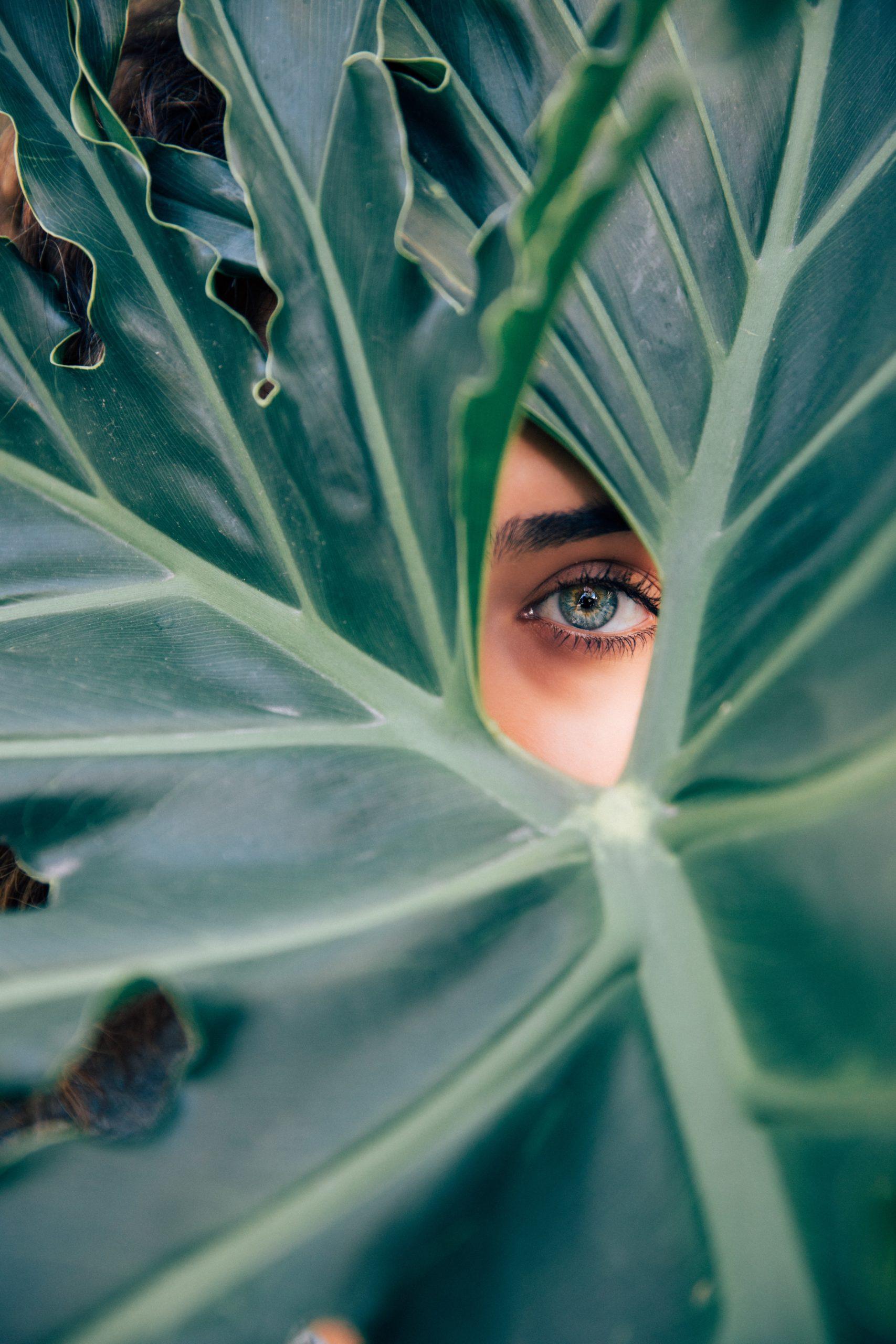 Prendre soin de ses yeux avec des solutions naturelles